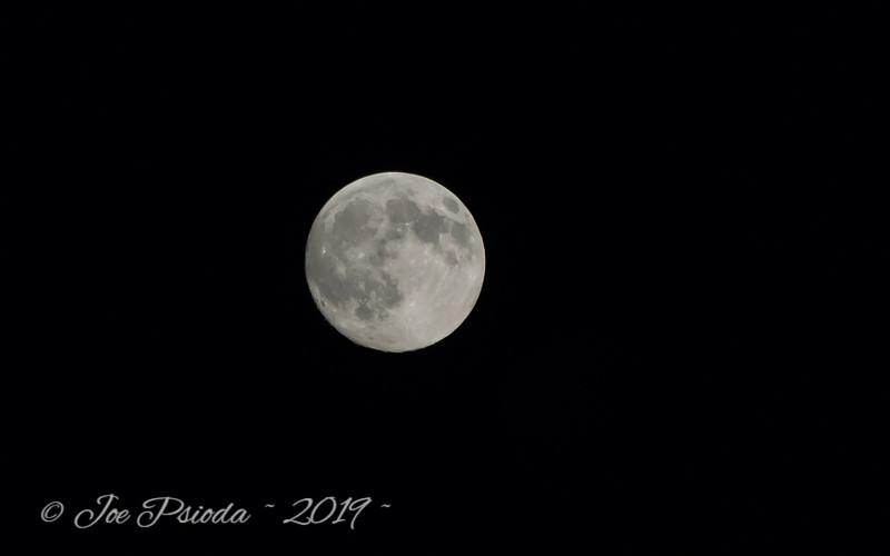 Full Moon Over the Chesapeake