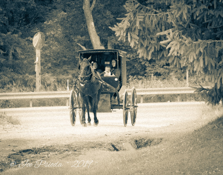 Amish Women in Carriage