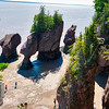 Hopewell Rocks from Above