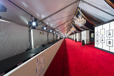 201502108 The Grammys Los Angeles 0041