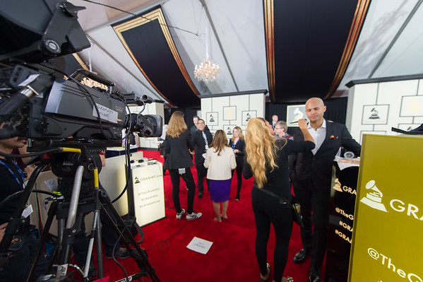 201502108 The Grammys Los Angeles 0101