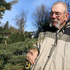 John Hussey the owner of John Hussey's Christmas tree farm in Townsend talks about the blue spruce trees he has on his farm for sale this year. SUN/JOHN LOVE