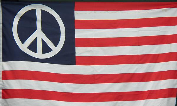 American Flag 007