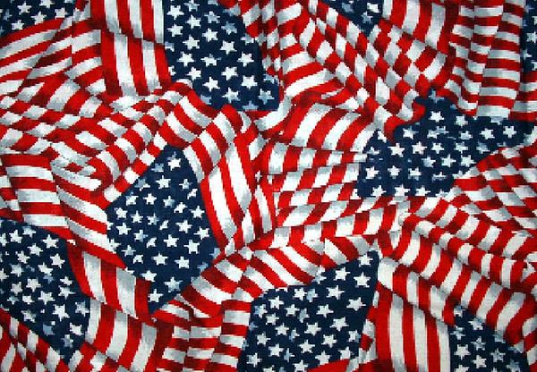 American Flag 009