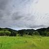 Fernandez Ranch <br /> John Muir Land Trust (JMLT) <br /> April 27, 2014