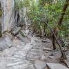 Mist Trail-Kathy- 8-27-17_MG_3337