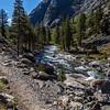 South Fork San Joaquin River-Kings Canyon 9-8-17_MG_4348