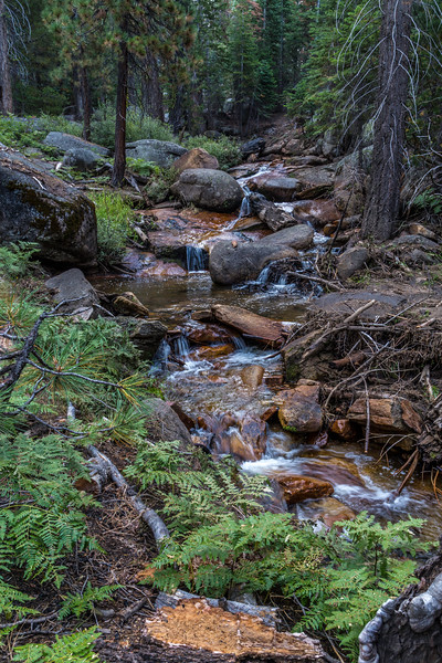 Trail to Sunrise High Siera Camp 8-30-17_MG_3562