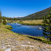 Lyell Canyon-Tuolmne River 9-1-17_MG_3763