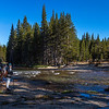 Kathy-Lyell Fork of Tuolumne River 9-1-17_MG_3721
