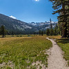 Lyell Canyon-JMT 9-1-17_MG_3790