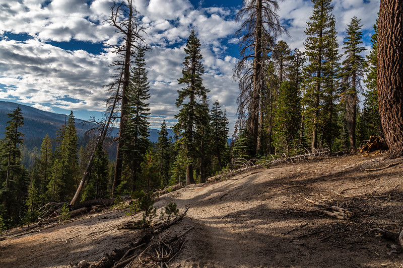 Trail to Reds Meadow 9-4-17_MG_4067