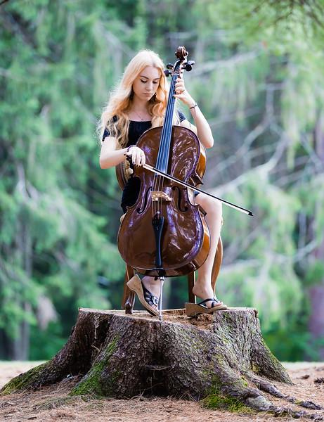 John Wong Photography   Queensbury - Cello
