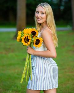 John Wong Photography | Glens Falls - Sunflower