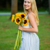 John Wong Photography | Glens Falls - Sunflower