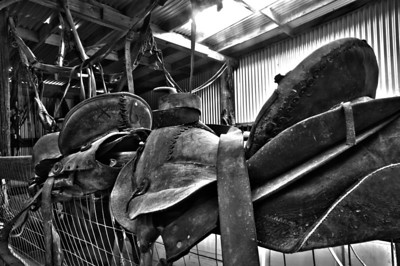 Saddles, Laws Museum