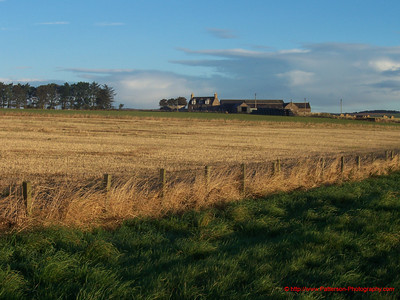 Scotish Farm 1