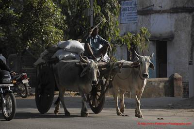 India Delivery Van