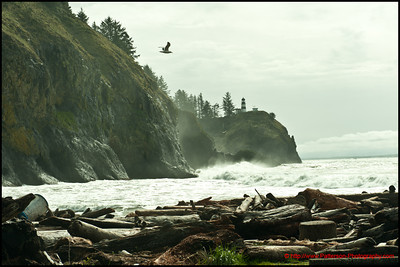 Cape Disappointment Lighthouse 2