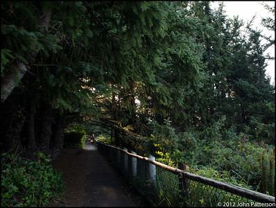 Meares Lighthouse Trail Oregon-1