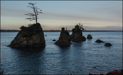 Oregon Bay Morning 1