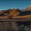 Sierra Bishop California-1