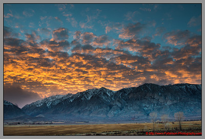 Owens Valley Morning 2