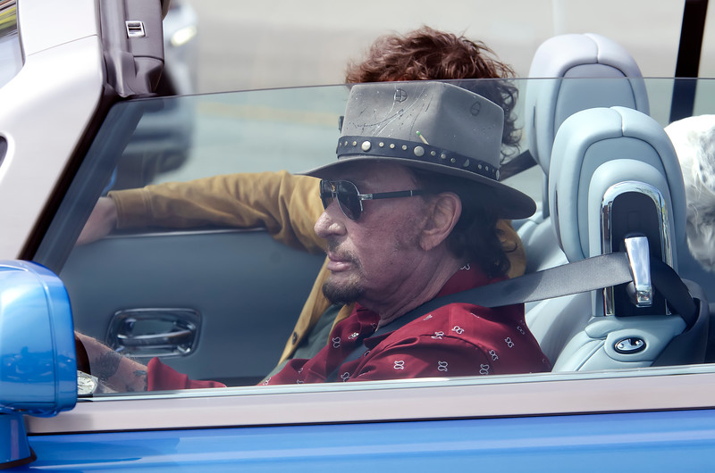 Johnny Hallyday Plays Johnny Hallyday