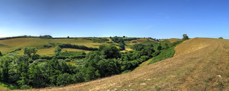 The view along the ridge towards Burcombe Wood