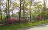 Cameron Crest Farms Johns Creek GA (11)
