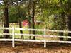 Cameron Crest Farms Johns Creek GA (13)
