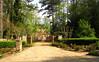 Cameron Crest Farms Johns Creek GA (4)