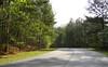Cameron Crest Farms Johns Creek GA (6)
