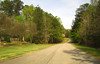 Cameron Crest Farms Johns Creek GA (21)