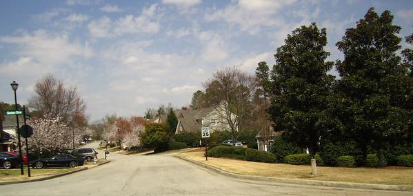 Foxdale The Enclave Johns Creek (2)