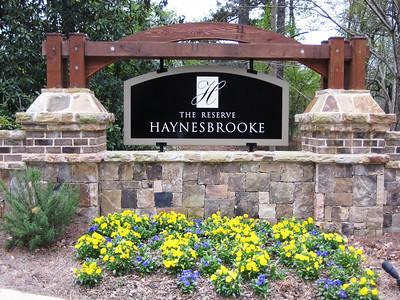 Haynes Brooke Alpharetta Neighborhood (5)