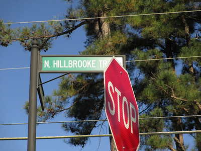 Hillbrooke Home Neighborhood Johns Creek 30005 Georgia (119)