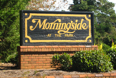 Morningside At The Park Townhomes In Johns Creek
