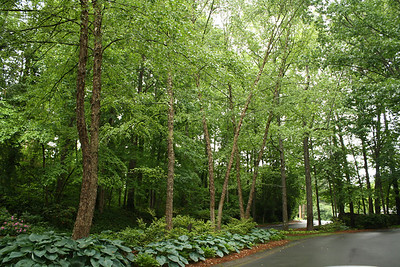 Rivermont Alpharetta GA Neighborhood (6)