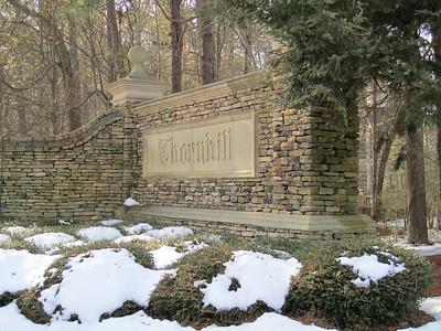 Thornhill Johns Creek Estate Home (15)