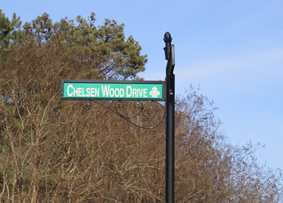 Thornhill Johns Creek Estate Home (18)