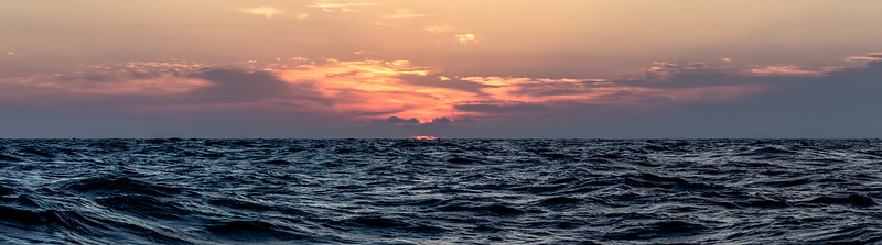 """The sea, once it cast its spell, holds one in its net of wonder forever.""  Jacques Yves Cousteau"