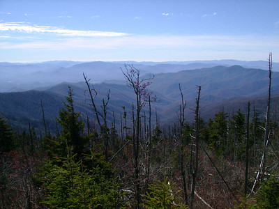 View from the parking lot at Clingmans Dome