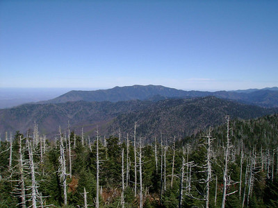 This would be North View. That is Mt Leconte, I think.