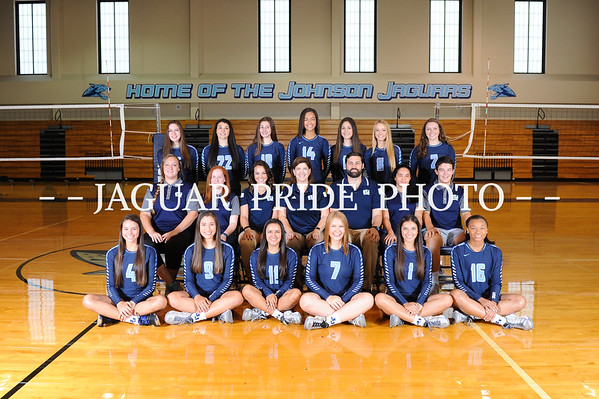 Johnson Volleyball
