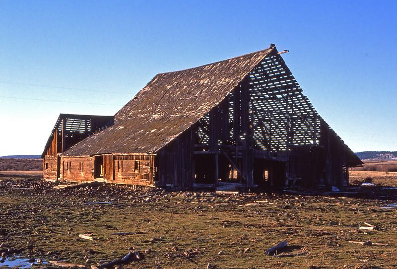 See-Through Barn