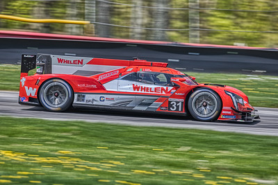 2019 Acura Sports Car Challenge at Mid-Ohio - Felipe Nasr and Pipo Derani in the #31 Cadillac DPi - Whelen Engineering Racing