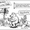It's True about Bears!