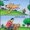 Run, doggy, run!