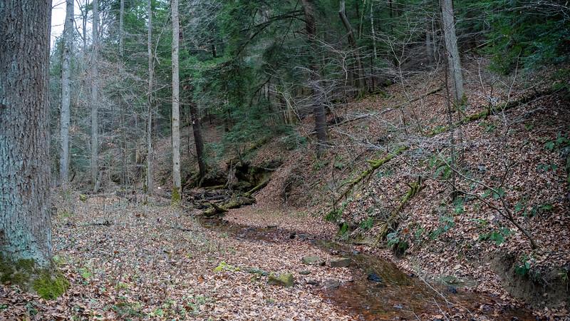 hocking-hills-trip-2020-109.jpg